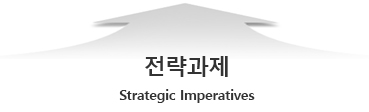 전략과제(strategic imperatives)
